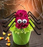 Spooktacular Halloween Fun from 1-800-Flowers.com