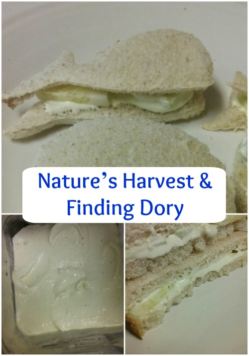 finding dory natures harvest