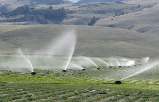 Different Types of Irrigation Systems