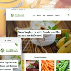Top 10 Grocery Store Ecommerce Themes For Supermarkets And Food Delivery Services 2017