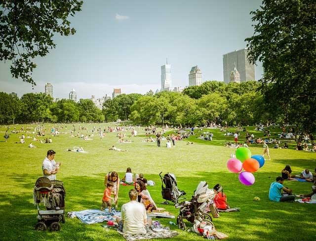 Enjoy the City's Parks
