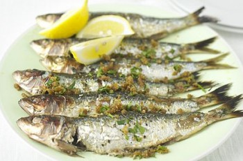 Sardines With Garlic Oil